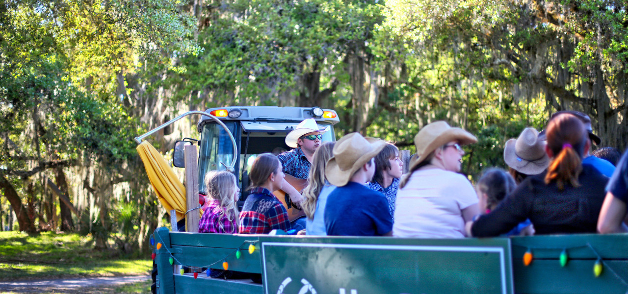Dinner Hayride near River Ranch, FL |  Westgate River Ranch Resort & Rodeo | Westgate Resorts