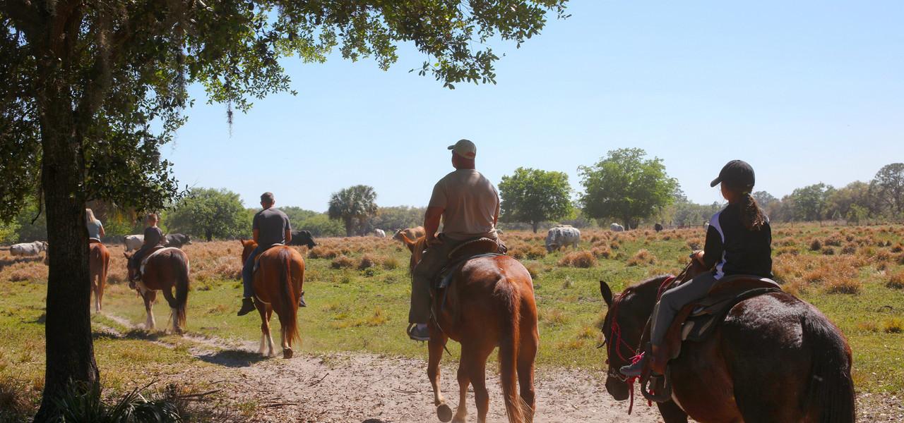 Trail Horseback Riding Near Orlando, FL |  Westgate River Ranch Resort & Rodeo | Westgate Resorts