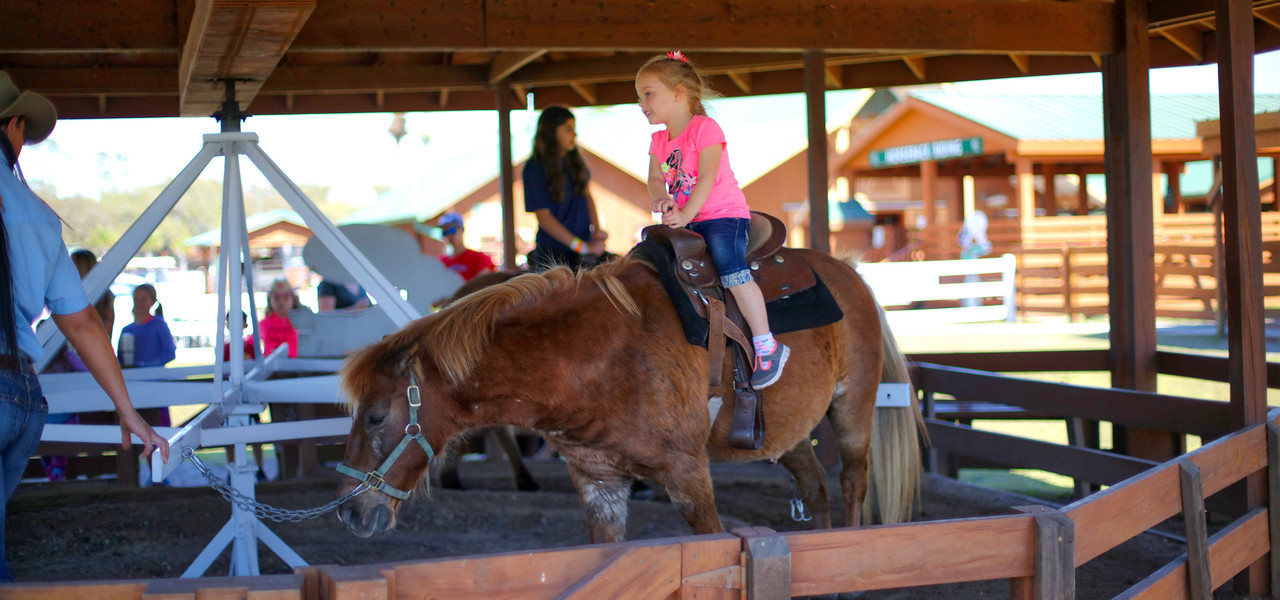 Glamping birthday party pony ride at Westgate River Ranch Resort & Rodeo!