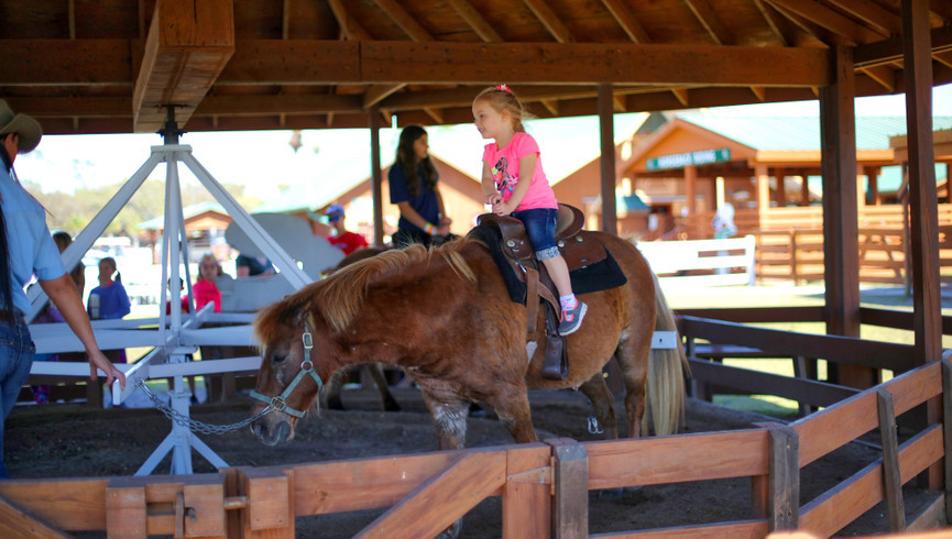 Pony Rides Near Orlando, FL |  Westgate River Ranch Resort & Rodeo | Westgate Resorts
