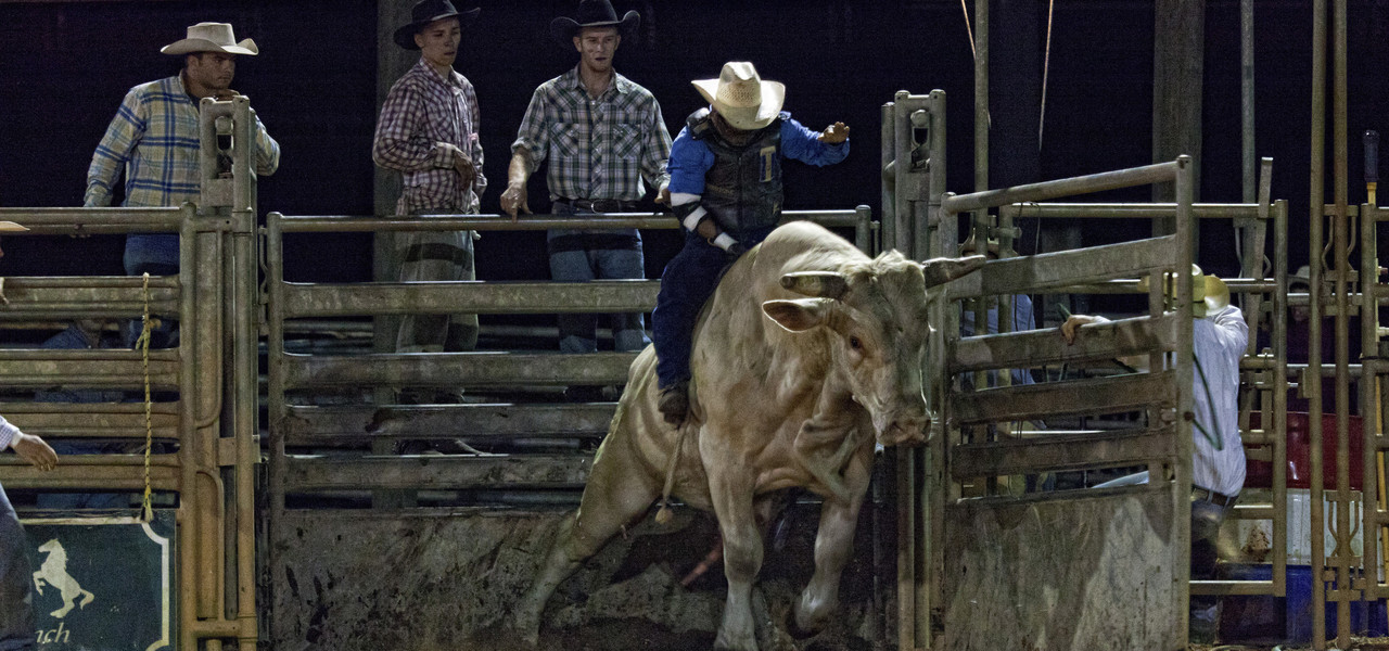 Rodeo Near Orlando, FL | Westgate River Ranch Resort & Rodeo | Westgate Resorts