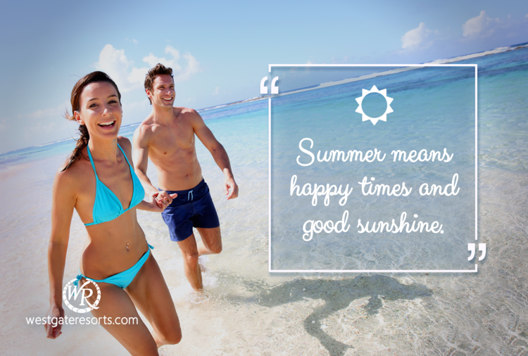 Summer Means Happy Times and Good Sunshine | Brian Wilson | Motivational Travel Quotes