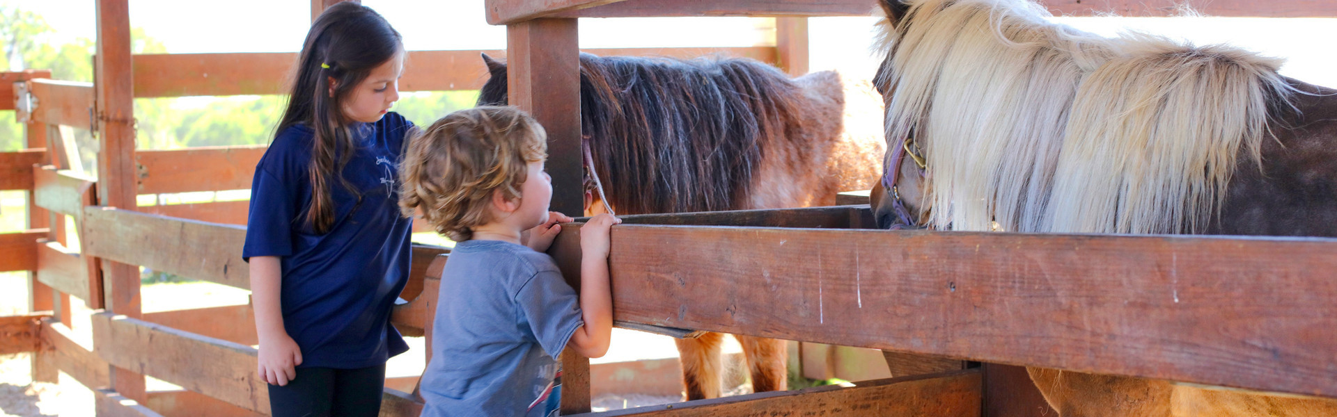 Florida Petting Zoo near Orlando | Kids at Petting Farm