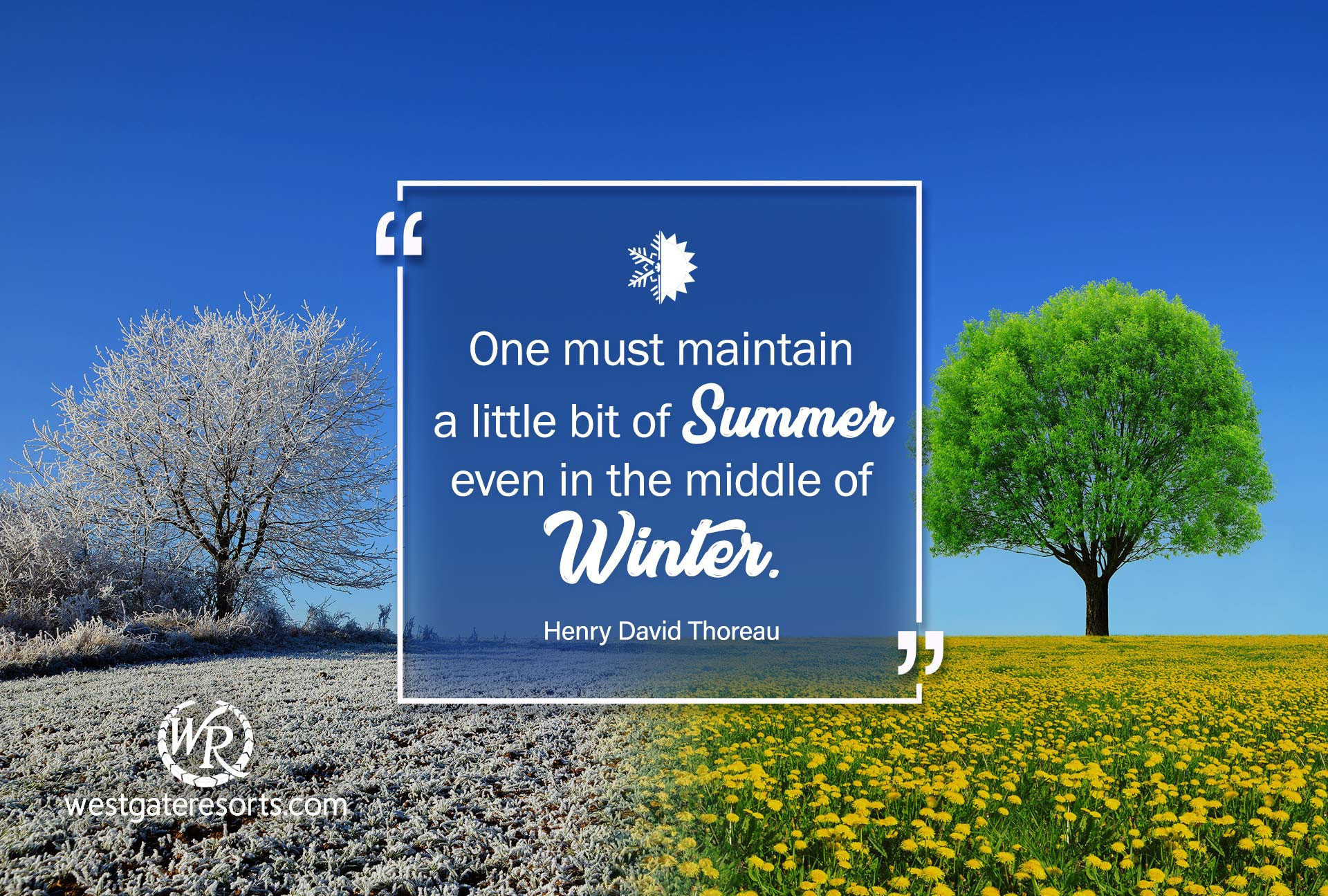 One must maintain a little bit of summer, even in the middle of winter | Henry David Thoreau | Travel Motivational Quotes