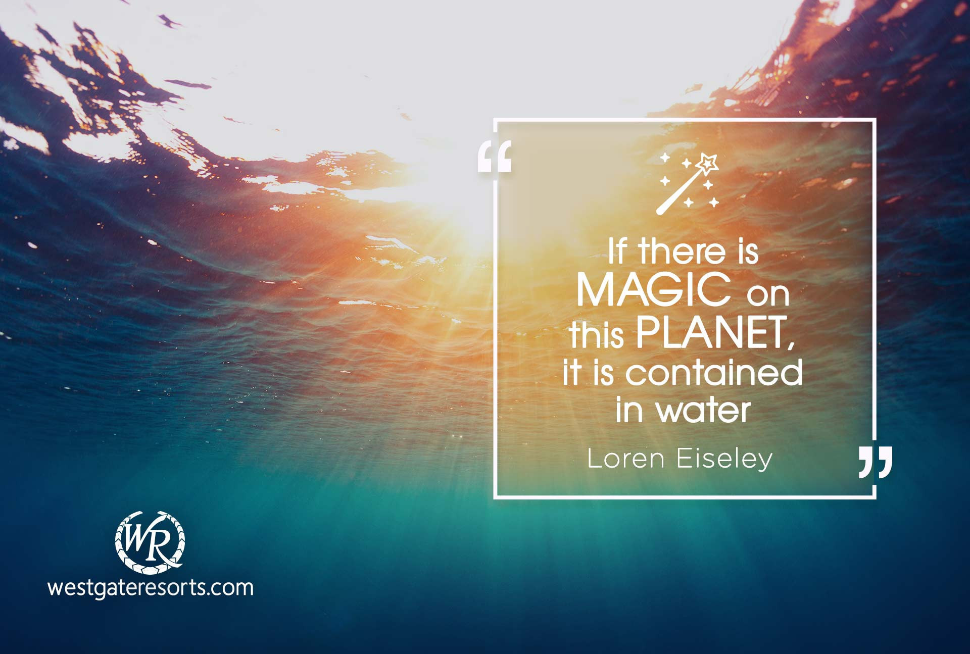 If there is magic on this planet, it is contained in water | Loren Eiseley | Travel Motivational Quotes