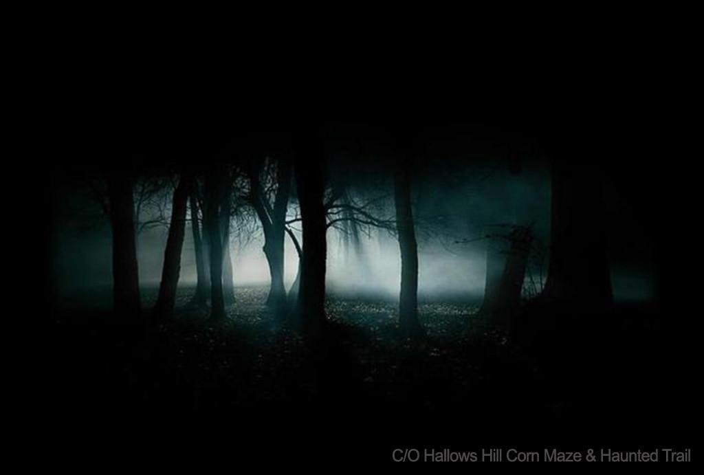 Hallows Hill Corn Maze & Haunted Trail – Baker, FL   Scary Florida Corn Mazes This Halloween   Westgate Resorts