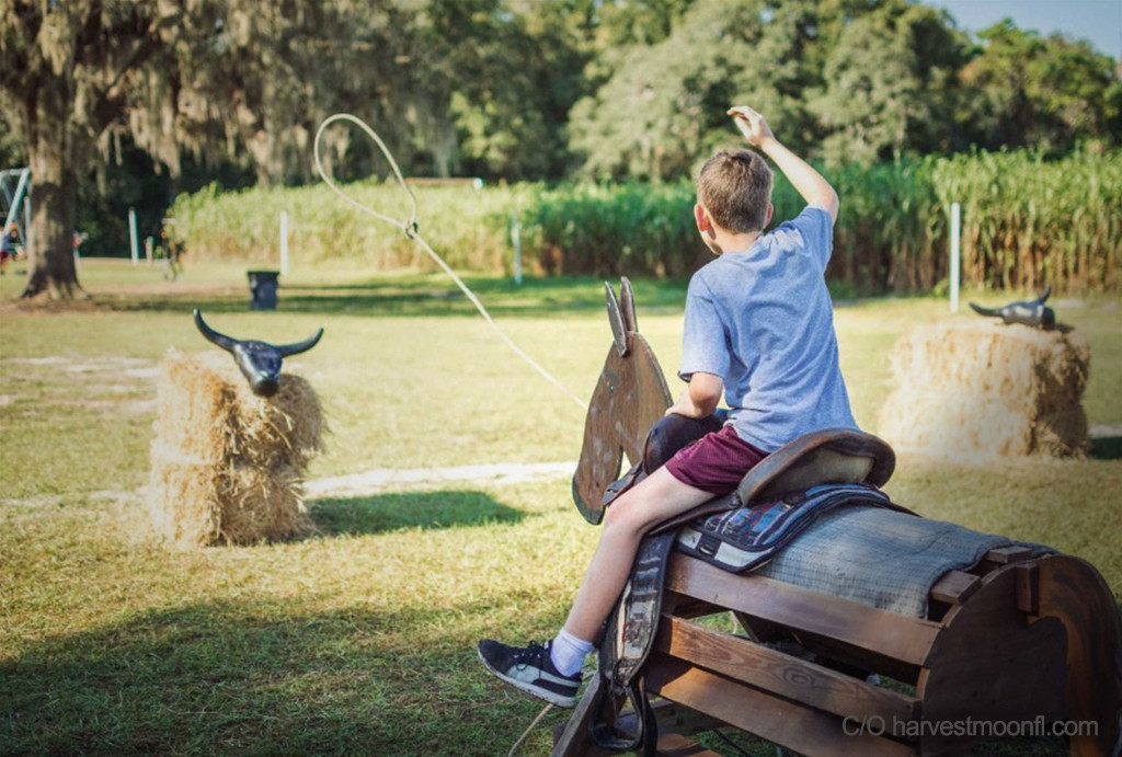Harvestmoon Farm – Masaryktown, FL | Scary Florida Corn Mazes This Halloween | Westgate Resorts