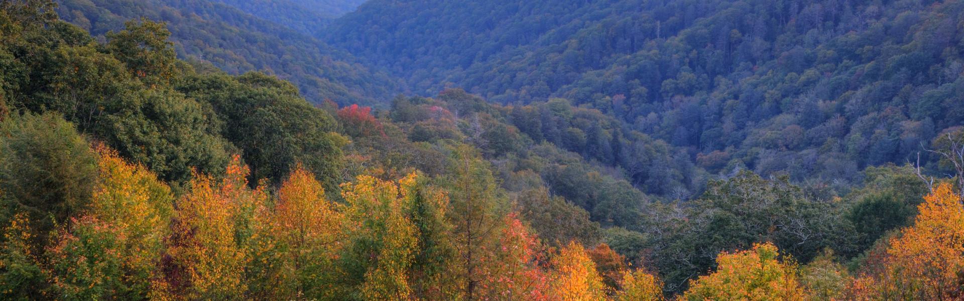 Gatlinburg Hotel Discount Rates | Mountain View