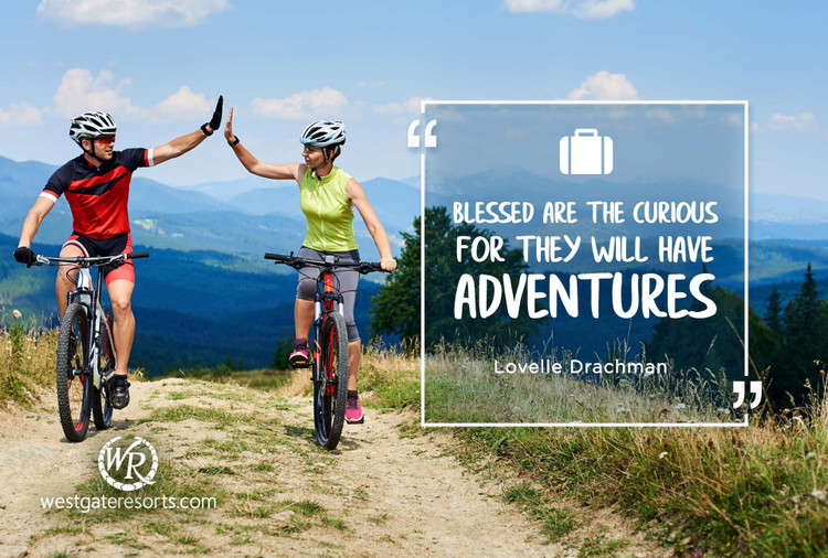 Blessed Are The Curious For They Will Have Adventures | Lovelle Drachman | Motivational Travel Quotes