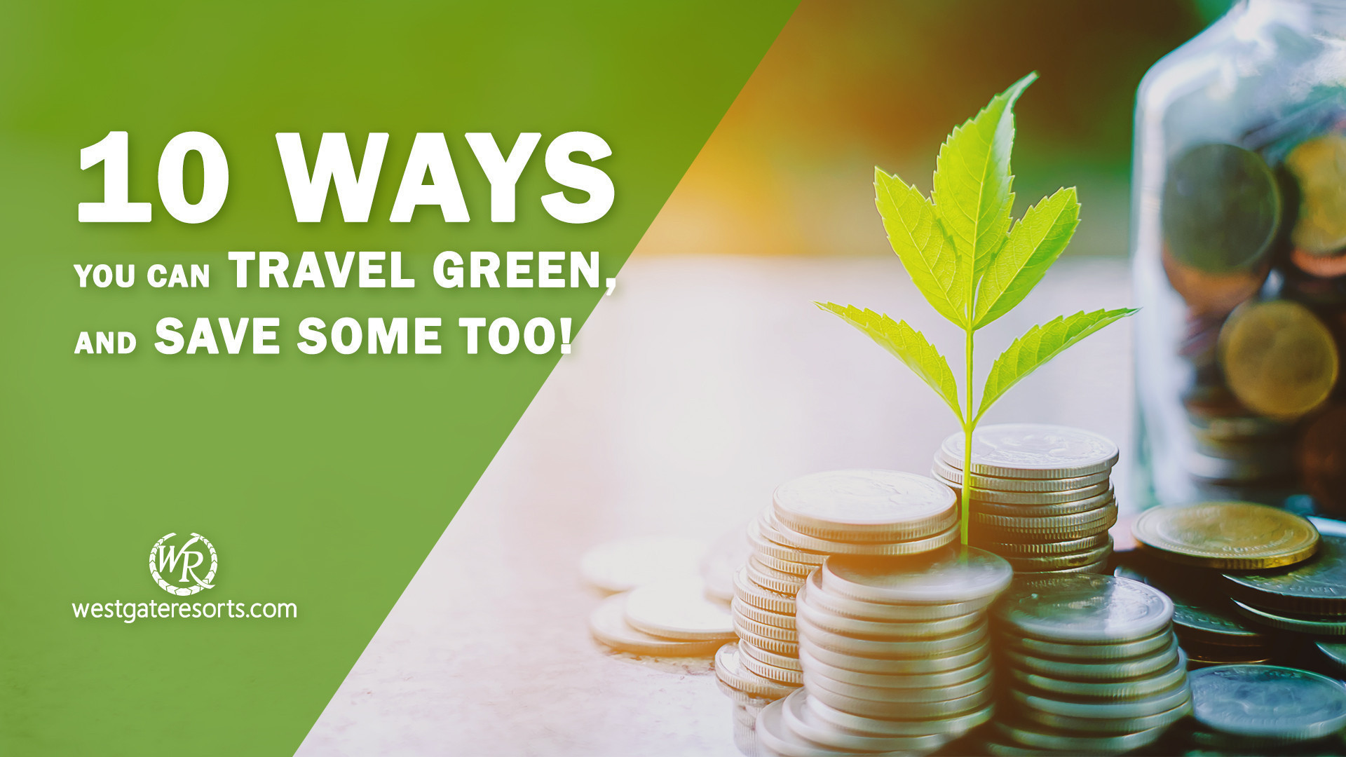 10 Ways You Can Travel Green, And Save Some Too! | Green Travel & Hotels at Westgate