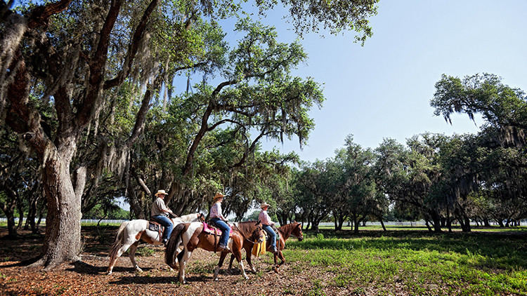 Horseback Riding at a Dude Ranch | 8 Florida Agritainment Activities You've Never Heard Of! | Agritourism Ideas & FL Destinations