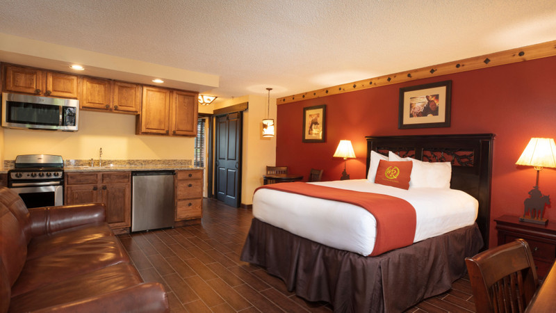 Accommodation Option -   lodge-suite