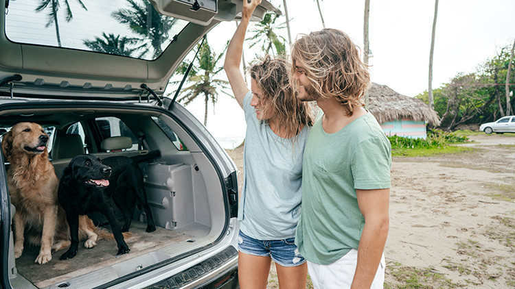 Dog Friendly Travel Tips | Regular Schedule | 10 Tips When Traveling Alone With Your Dog This Summer!