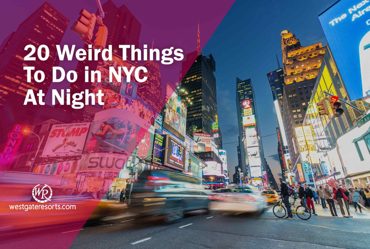 Weird Things To Do In NYC At Night