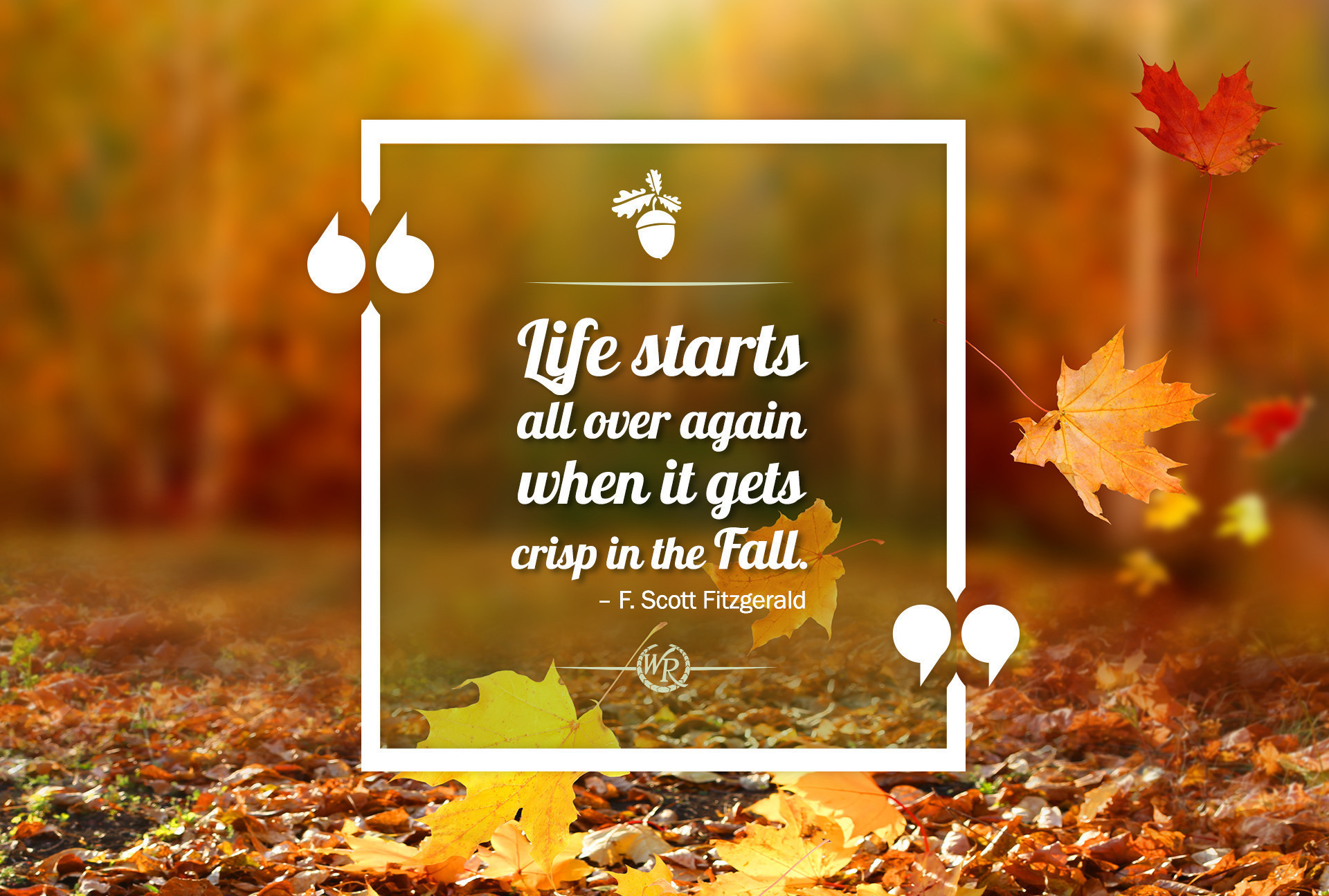Life Starts All Over Again When It Gets Crisp In The Fall. – F. Scott Fitzgerald | Inspirational Travel Quotes