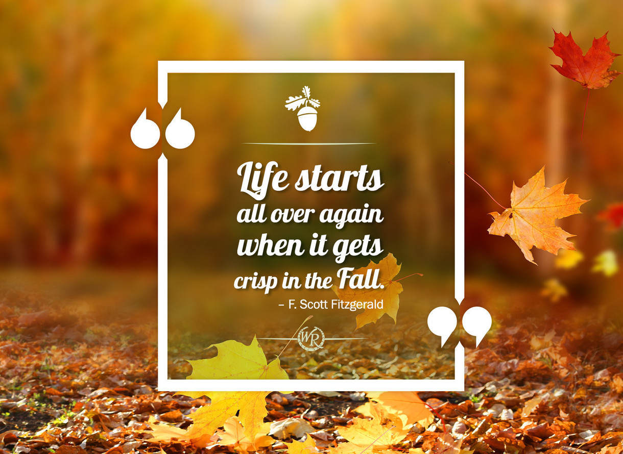 Life Starts All Over Again When It Gets Crisp In The Fall F
