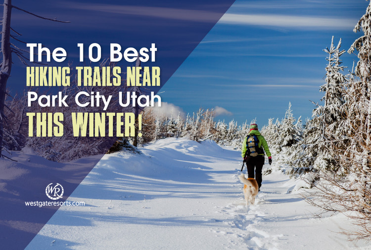 The 10 Best Hiking Trails Near Park City Utah This Winter!