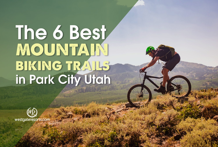 The 6 Best Mountain Biking Trails In Park City Utah!