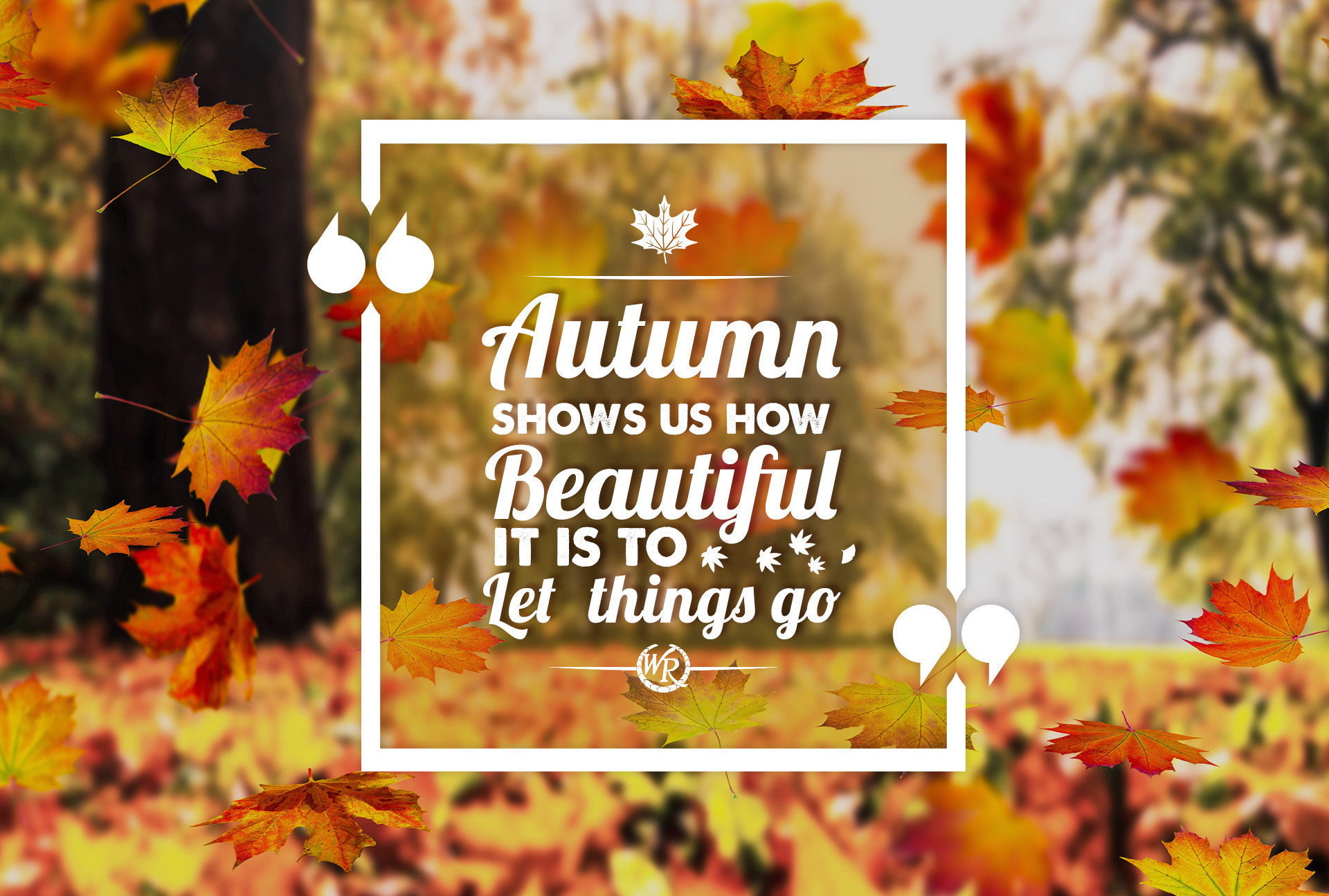 Autumn Shows Us How Beautiful It Is To Let Things Go | Inspirational Travel Quotes