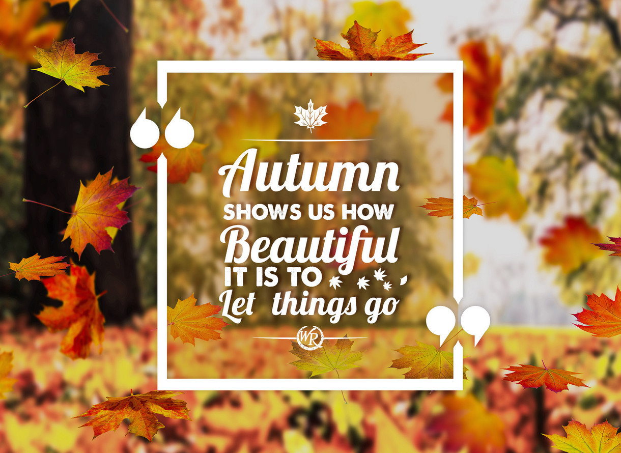 Autumn Shows Us How Beautiful It Is To Let Things Go ...