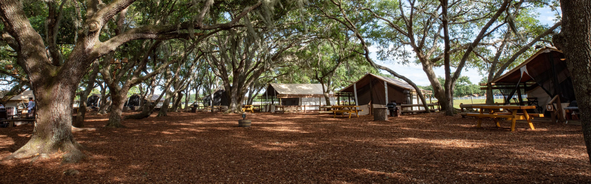 Florida Ranch Hotel Accommodations | Inside of Glamping Tent