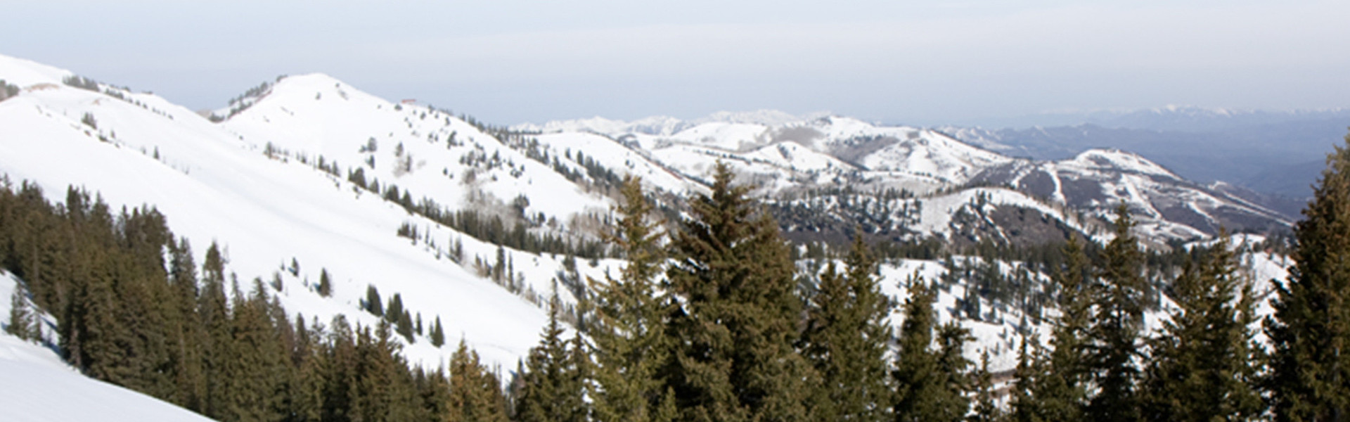 Weddings For Couples Over 40 In Park City - Park City Mountains
