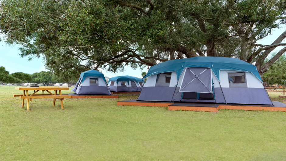 Multiple Platform Tents Camping - Westgate River Ranch Resort & Rodeo