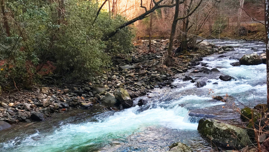 Forest and stream - Westgate Smoky Mountain Resort