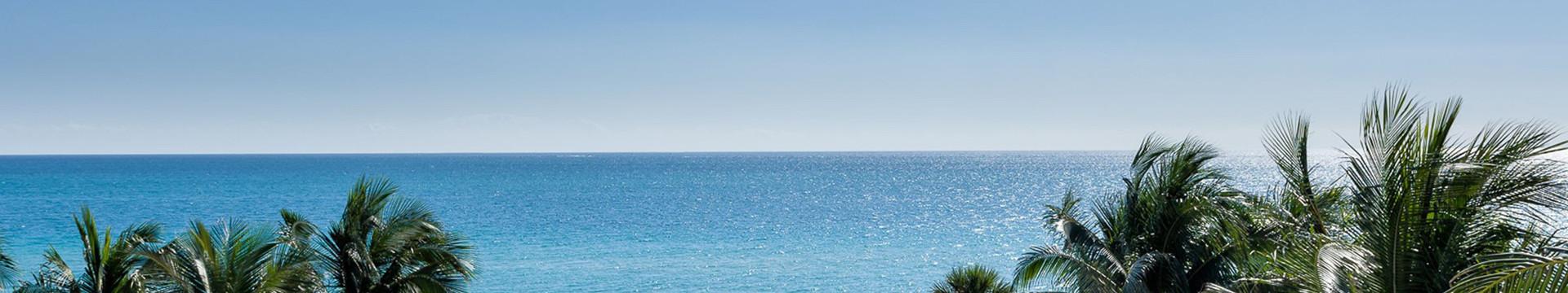 Beach with palm beach - Westgate Resorts