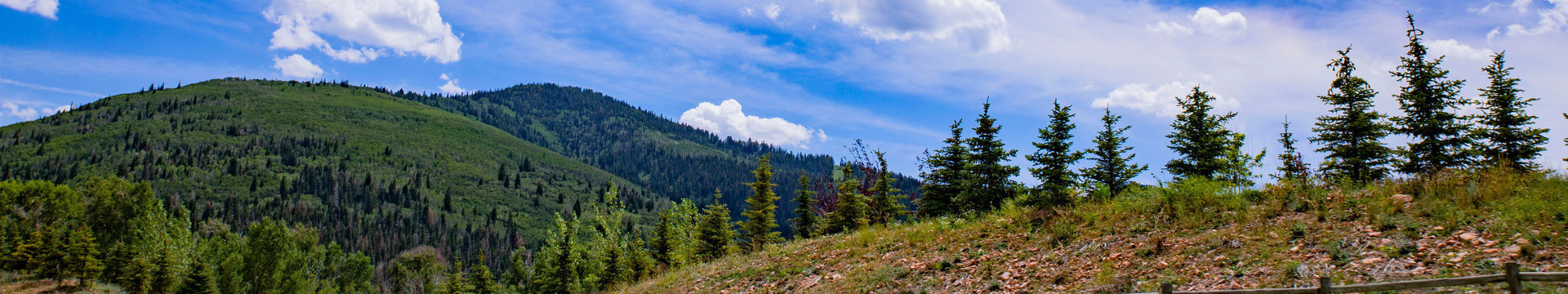 Activities at our Park City, Utah Hotel and Ski Resort located near Park City Mountain | Mountain Biking