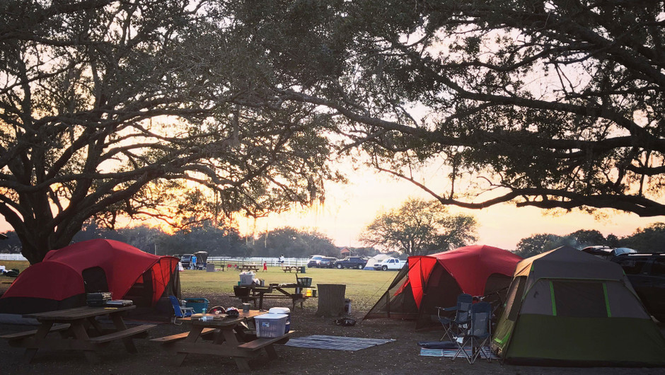 Multiple Tents Camping - Westgate River Ranch Resort & Rodeo