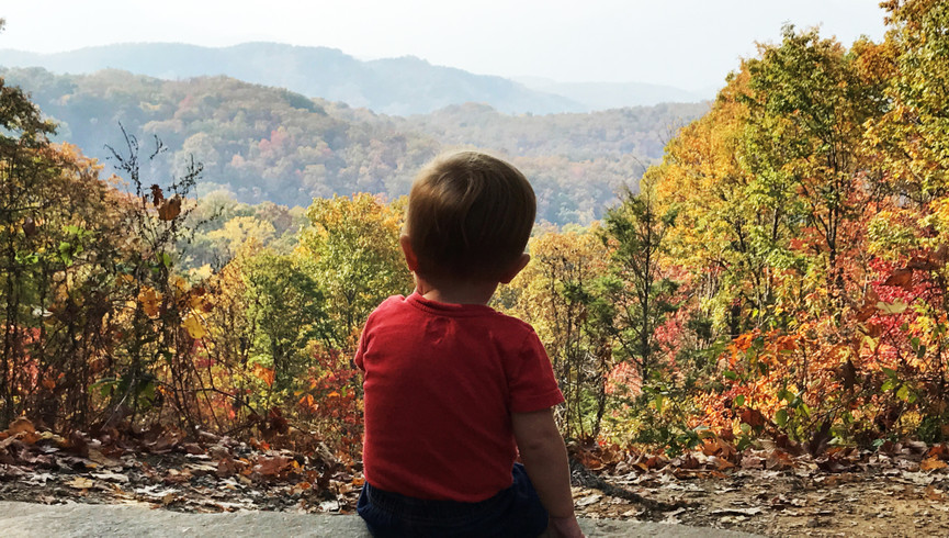 Little Boy looking at the Autumn Mountains - Westgate Smoky Mountain Resort