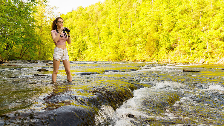 Smoky Mountains - The Best Places To Vacation With College Students