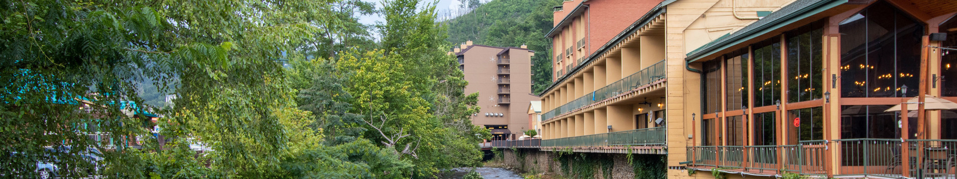 Stream - River Terrace Resort