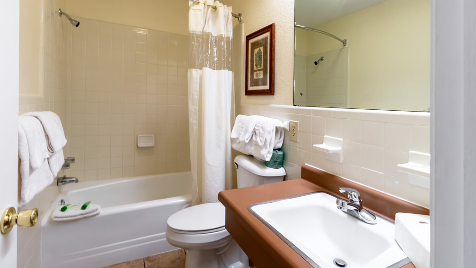 Bathroom in the Standard King Room | River Terrace Resort