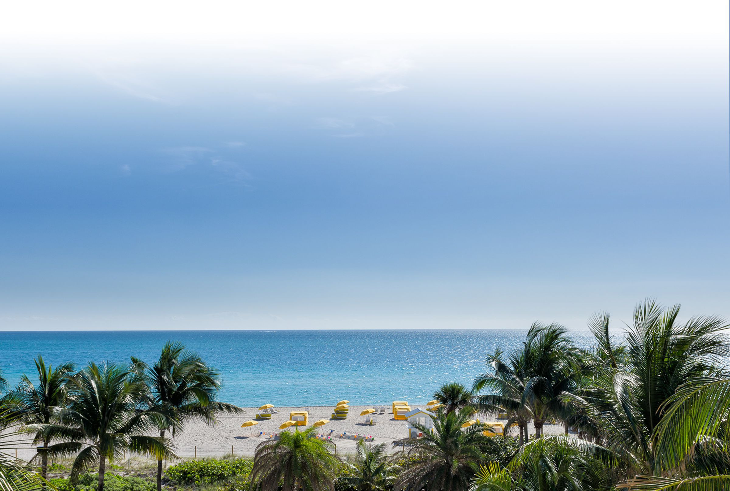 Oceanfront resort overlooking white-sand beach and Atlantic Ocean | Westgate South Beach Oceanfront Resort