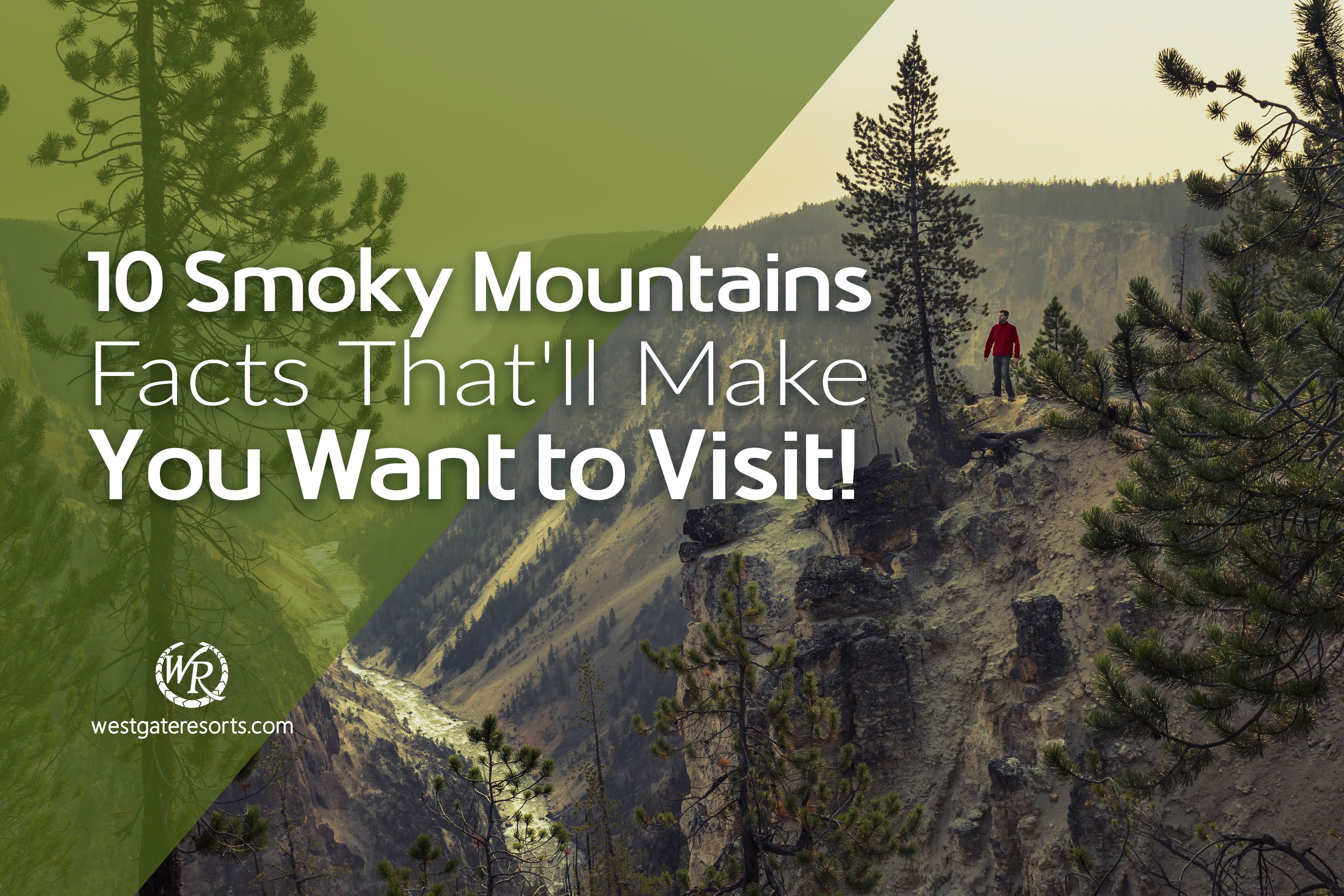 10 Smoky Mountains Facts That'll Make You Want to Visit!