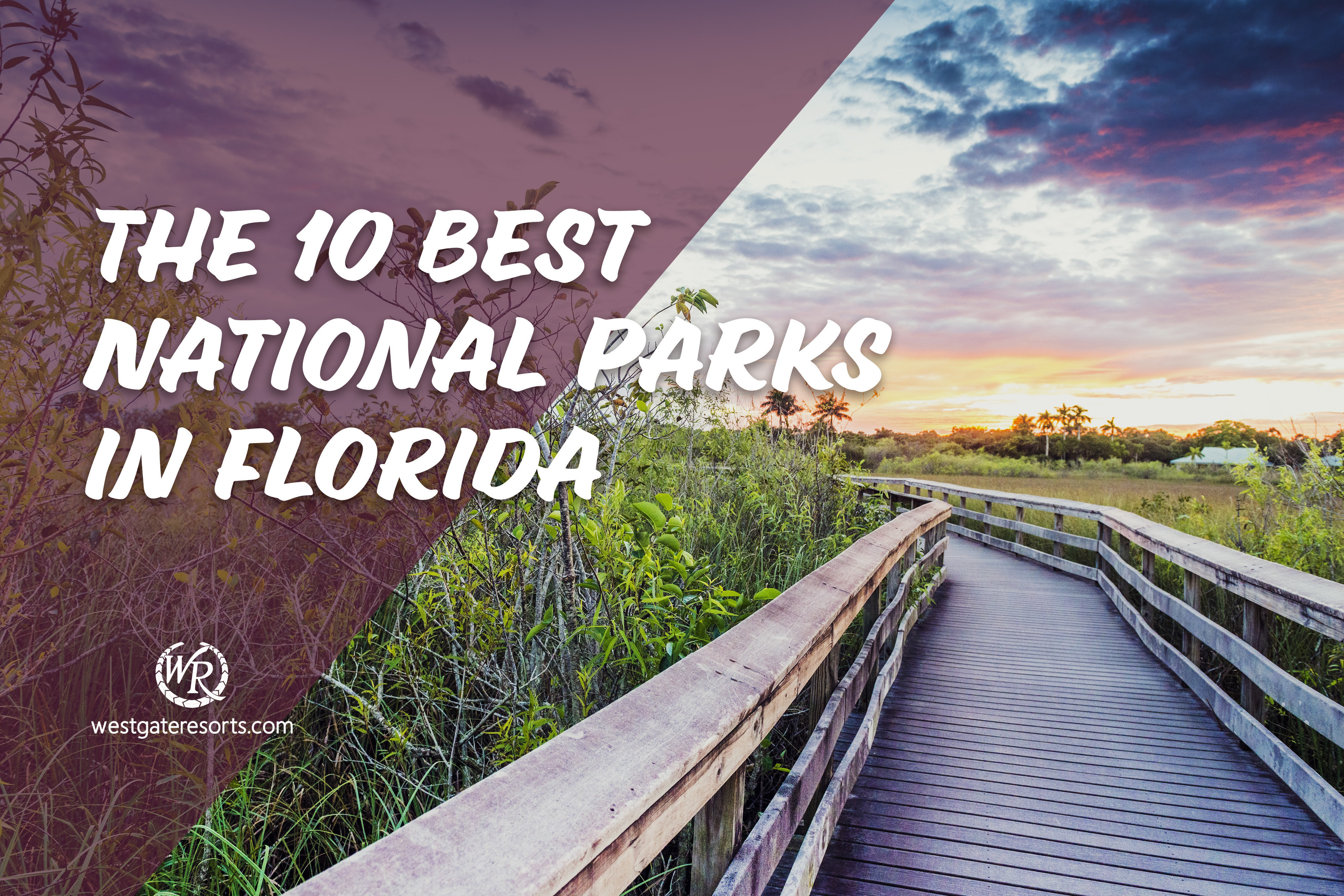 The 10 Best National Parks in Florida